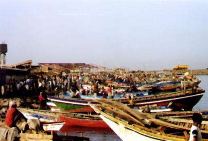 picture of fish market in Hodeidah